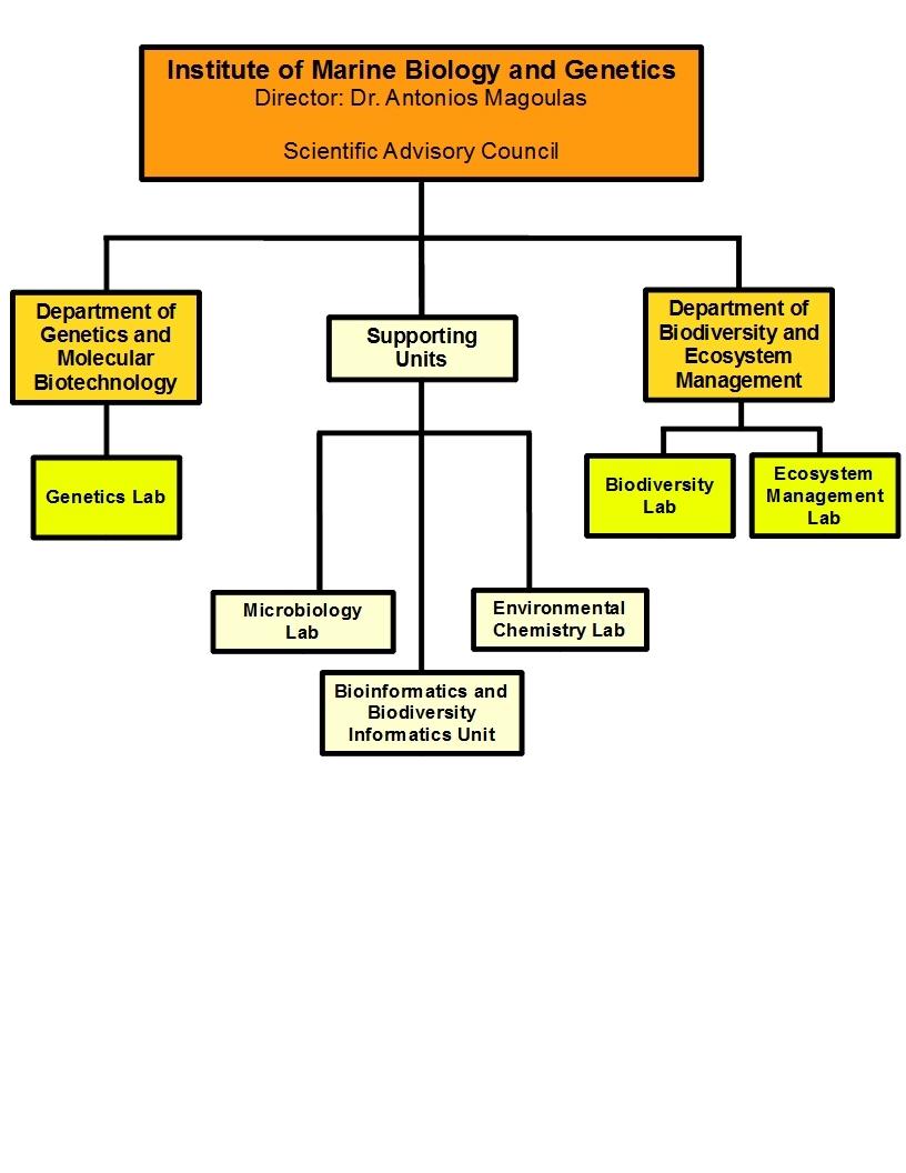 Organisational structure | MARBIGEN